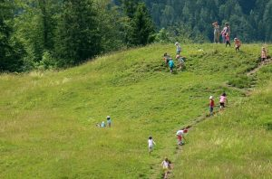 Wandern im Allgäu gibt den Kindern mal Gelegenheit Natur zu tanken und sich so richtig auszutoben. (#1)