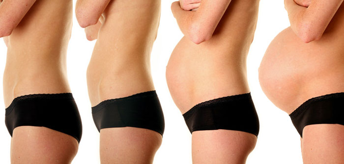 7. Schwangerschaftswoche (SSW) – gut erkennbar auf dem Ultraschall