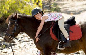 In der Auvergne ist das Pferd ein gerne gesehener Begleiter des Menschen. Reiten können hier nicht nur die Kinder. (#2)